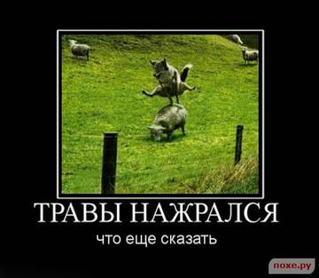 http://sh.uploads.ru/t/ug6KY.jpg