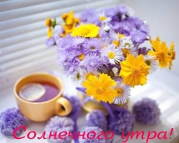 http://sh.uploads.ru/t/uw1yd.jpg