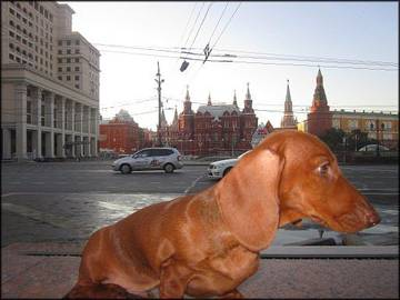 http://sh.uploads.ru/t/uwQcA.jpg