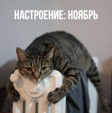 http://sh.uploads.ru/t/uxJc8.jpg