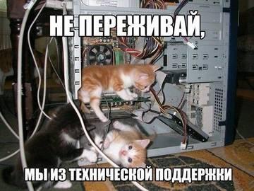 http://sh.uploads.ru/t/uy93O.jpg