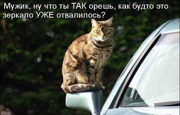 http://sh.uploads.ru/t/vGEAJ.jpg