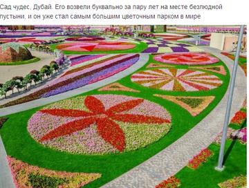 http://sh.uploads.ru/t/vPF0Q.png