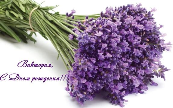 http://sh.uploads.ru/t/vekqU.jpg
