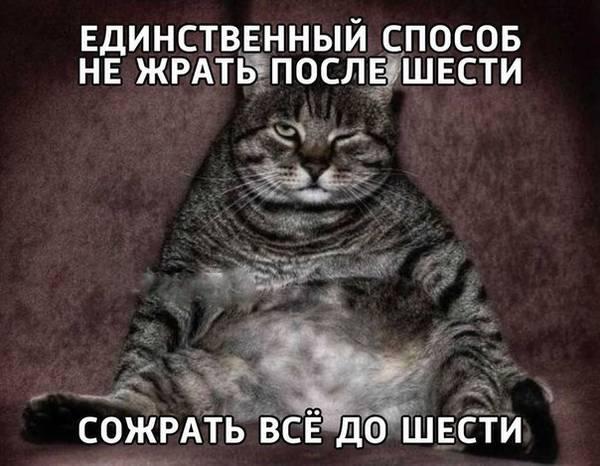 http://sh.uploads.ru/t/vuh0F.jpg