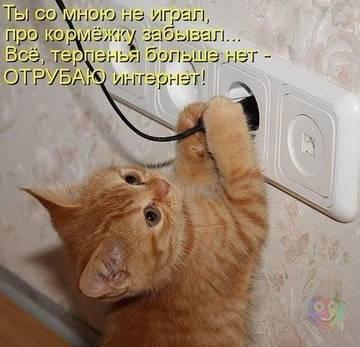 http://sh.uploads.ru/t/w1TGv.jpg