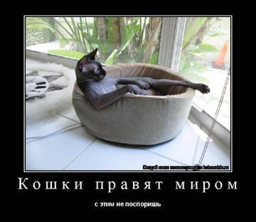 http://sh.uploads.ru/t/w1i3K.jpg