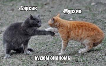 http://sh.uploads.ru/t/wBn5Z.jpg
