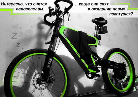 http://sh.uploads.ru/t/wtWo3.jpg