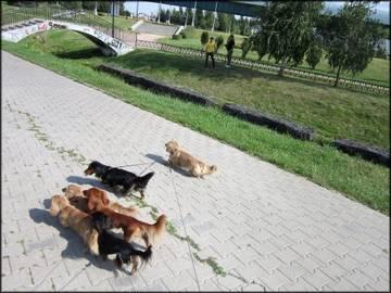 http://sh.uploads.ru/t/xrCu9.jpg