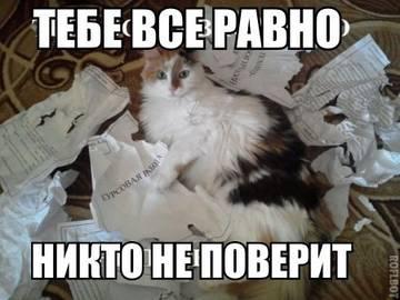 http://sh.uploads.ru/t/y5V4i.jpg
