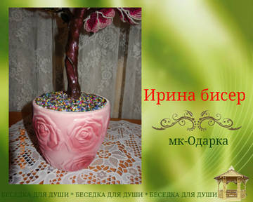 http://sh.uploads.ru/t/yebvW.jpg