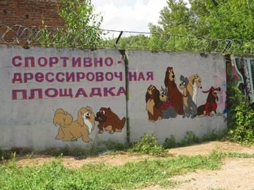 http://sh.uploads.ru/t/yfRz2.jpg