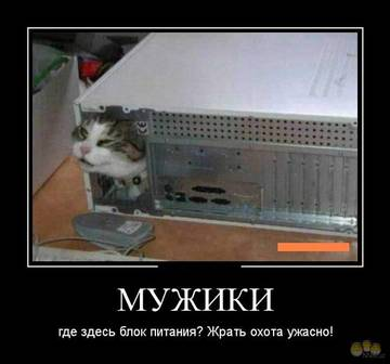 http://sh.uploads.ru/t/ylkxc.jpg