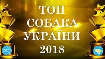 http://sh.uploads.ru/t/yoB6p.jpg