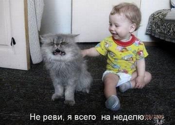 http://sh.uploads.ru/t/yskcH.jpg