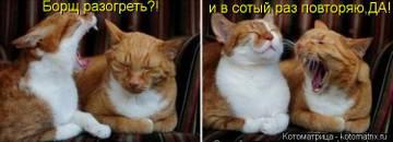 http://sh.uploads.ru/t/ysxNo.jpg