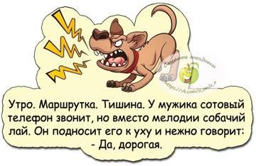 http://sh.uploads.ru/t/z0pYg.jpg