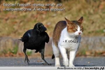 http://sh.uploads.ru/t/z8pFR.jpg
