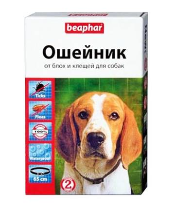 http://sh.uploads.ru/t/zASvN.jpg