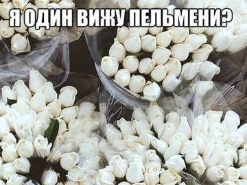 http://sh.uploads.ru/t/zVj49.jpg