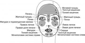 http://sh.uploads.ru/t/zmhZS.jpg