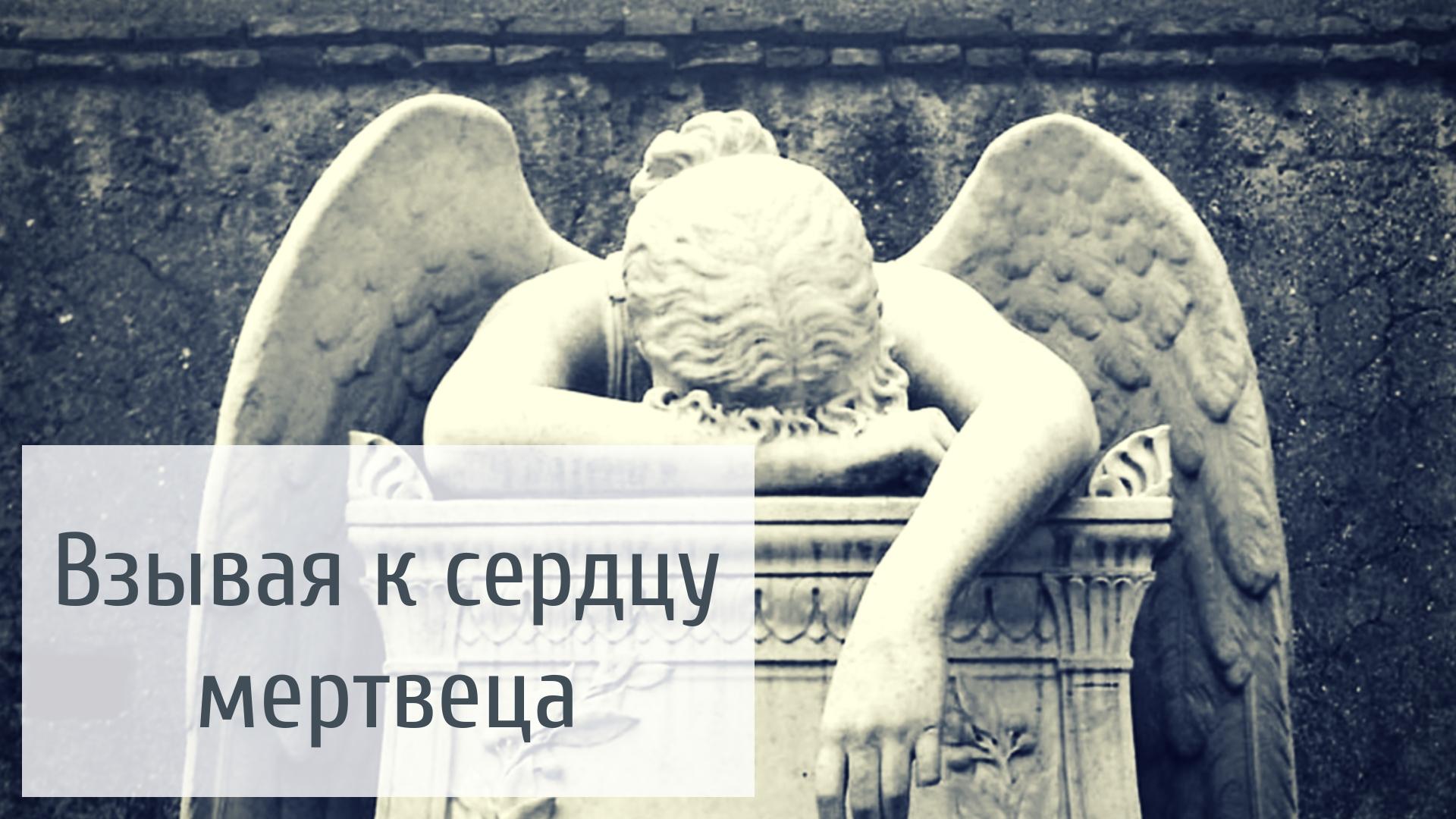 http://sh.uploads.ru/tr9bd.jpg