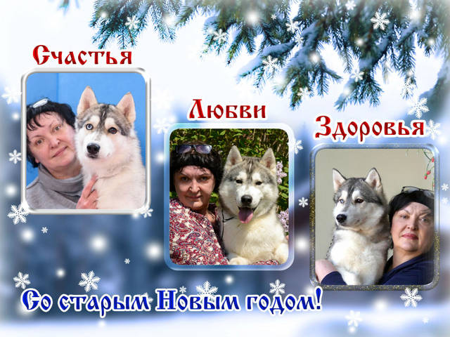 http://sh.uploads.ru/y3dlL.jpg