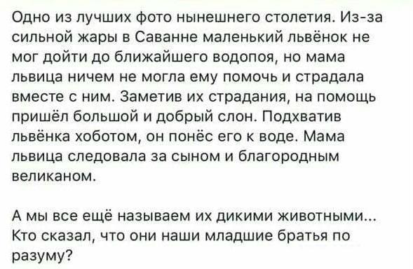 http://sh.uploads.ru/yY9IA.jpg