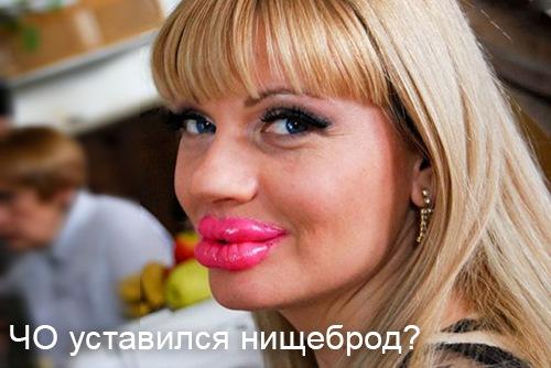 http://sh.uploads.ru/9gTUl.jpg