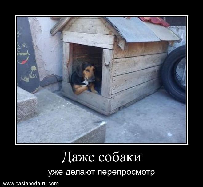 http://sh.uploads.ru/CfOq8.jpg