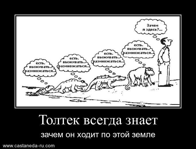 http://sh.uploads.ru/K8ekR.jpg