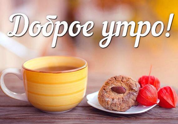 http://sh.uploads.ru/QKzwB.jpg