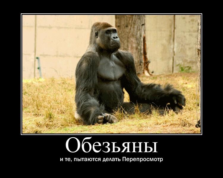 http://sh.uploads.ru/SjcGb.jpg