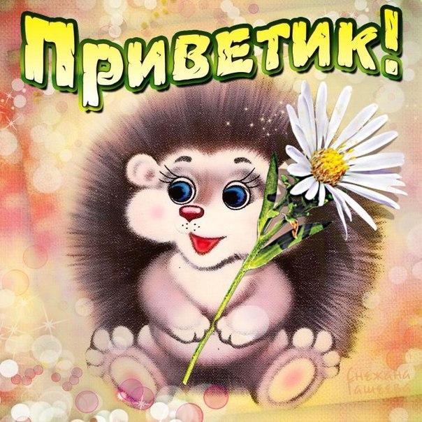 http://sh.uploads.ru/Su48w.jpg