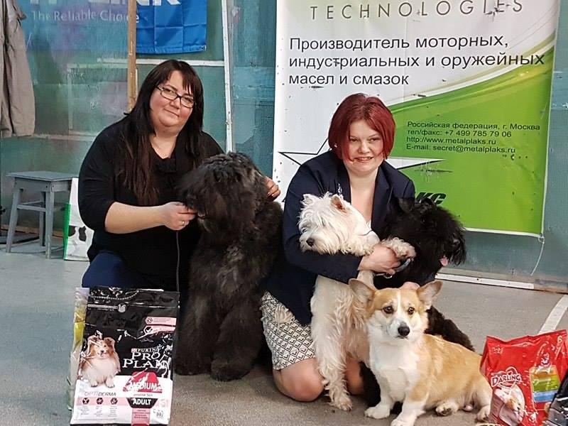 http://sh.uploads.ru/V3BP1.jpg