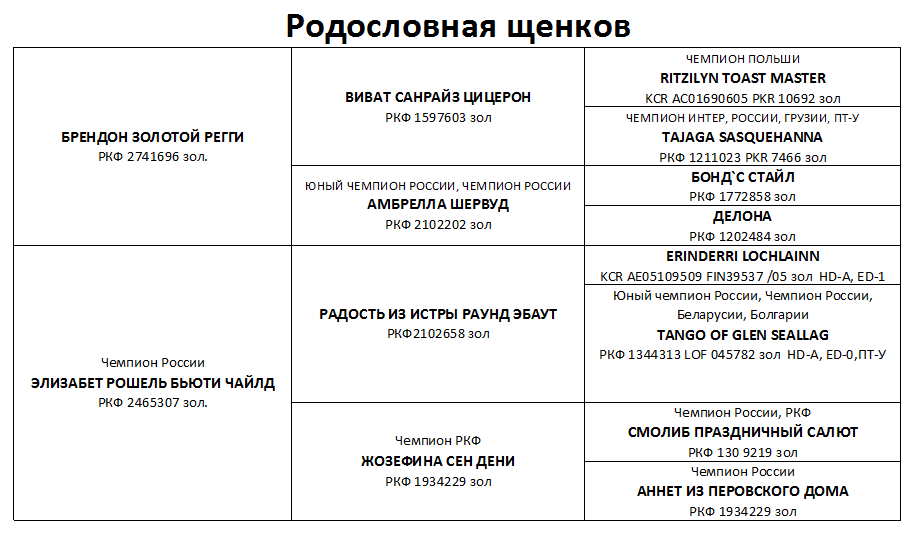 http://sh.uploads.ru/VUg4H.png