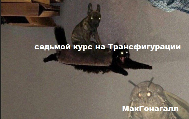 http://sh.uploads.ru/aQuN9.jpg