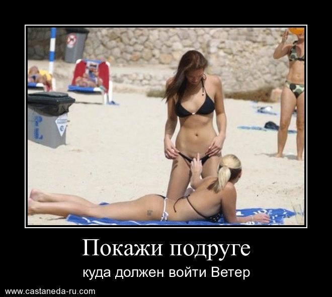 http://sh.uploads.ru/dvJ8T.jpg