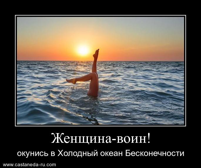 http://sh.uploads.ru/oMmIt.jpg