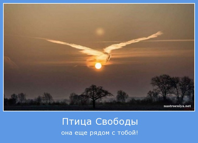 http://sh.uploads.ru/oQDHX.jpg