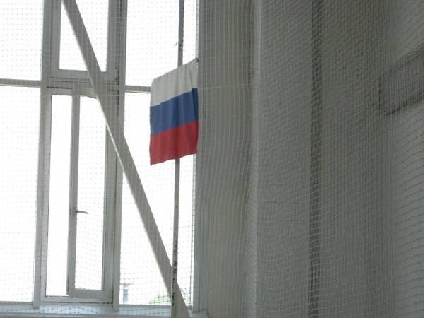 http://sh.uploads.ru/t/01WqE.jpg