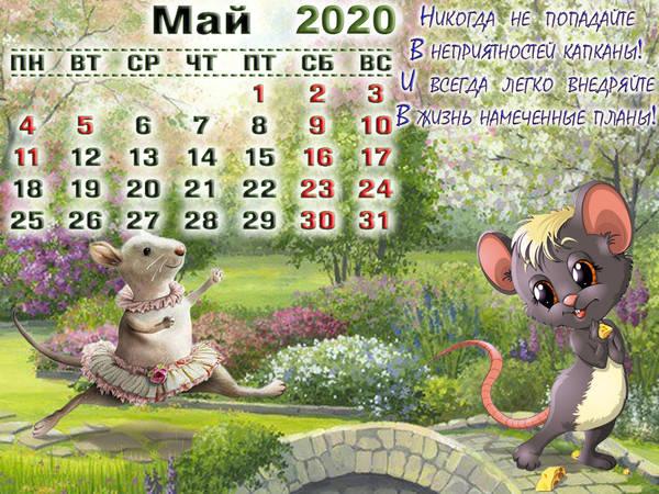 http://sh.uploads.ru/t/2LE6v.jpg