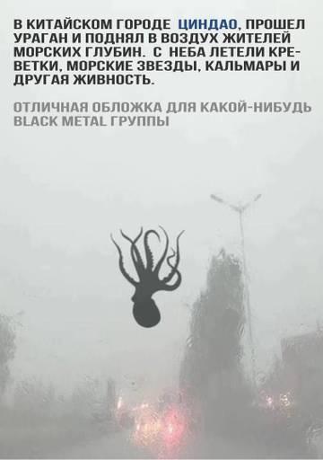 http://sh.uploads.ru/t/5ODaM.jpg