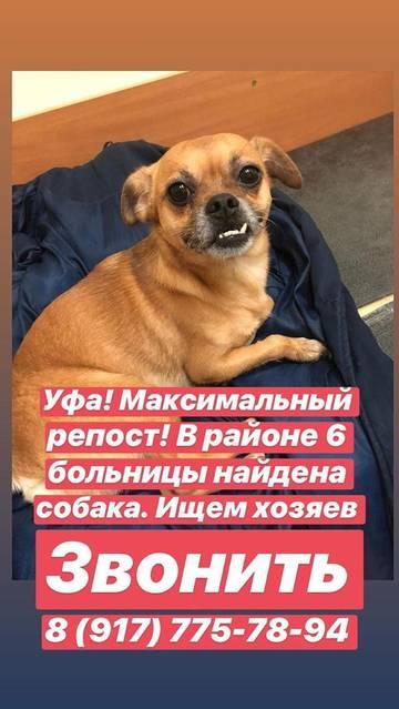 http://sh.uploads.ru/t/9O2zh.jpg