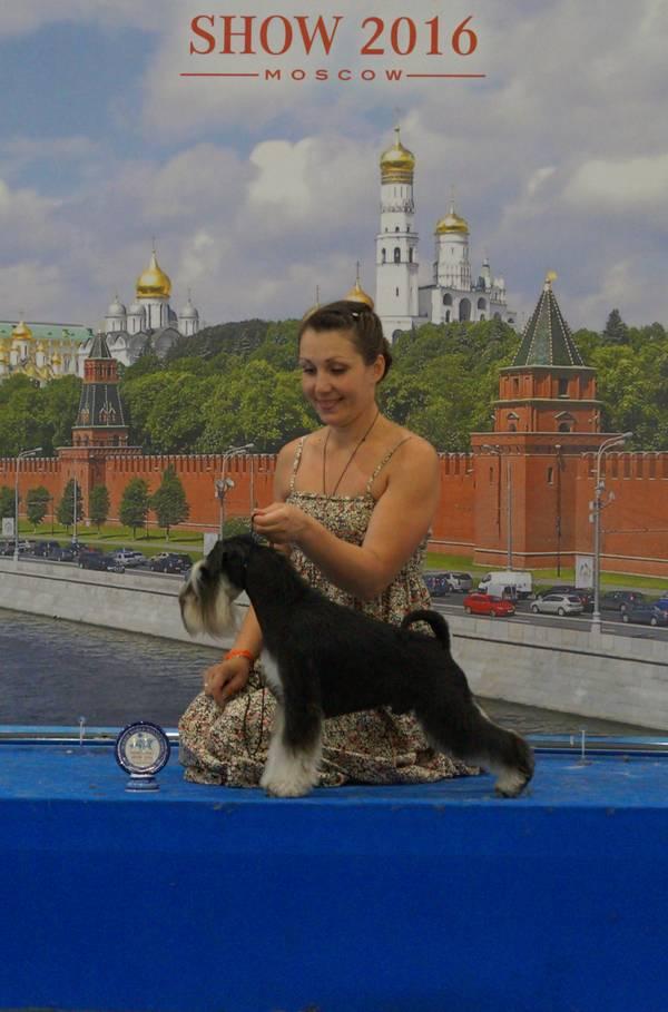 http://sh.uploads.ru/t/BG3M0.jpg
