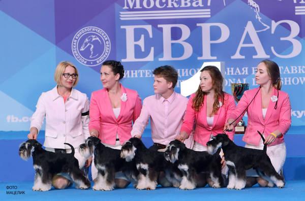 http://sh.uploads.ru/t/HnNJ6.jpg