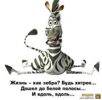 http://sh.uploads.ru/t/OuUQg.jpg