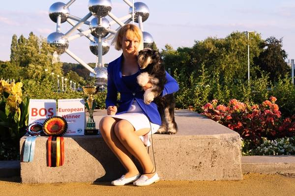 http://sh.uploads.ru/t/RsmFM.jpg