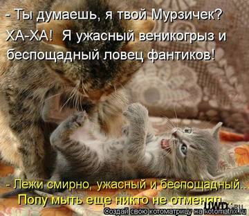 http://sh.uploads.ru/t/Wbnme.jpg